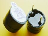 Loa chip 5V